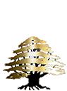Cedars Banquet Hall Logo